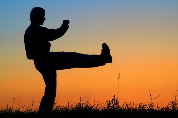 Man practicing karate on the grassy horizon after sunset.